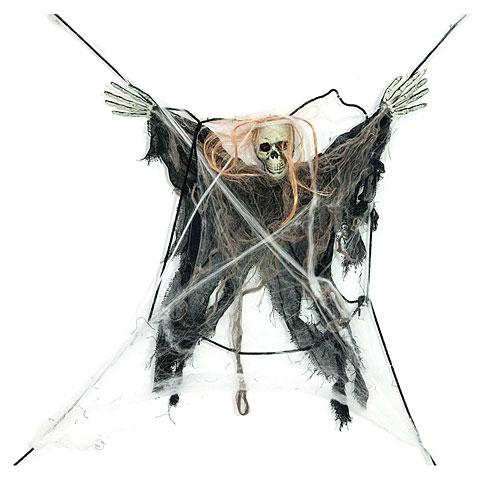 Europalms Spinnennetz mit Beute