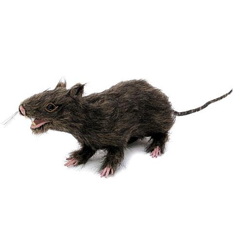 Europalms Ratte, lebensecht mit Fell