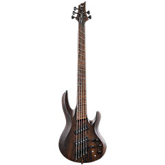 ESP LTD B-1005SE Multi-Scale NS « Bajo eléctrico