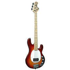Music Man StingRay MM130 M HB